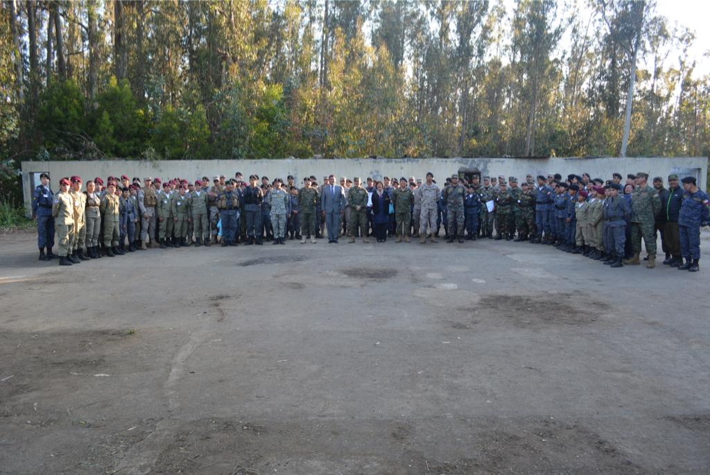 8.597 ARMAS DE FUEGO DESTRUIDAS.